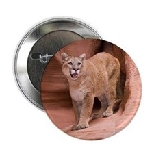 "Cougar 2.25"" Button"