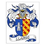 Llanos Family Crest Small Poster