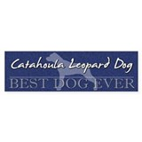 Best Dog Ever Catahoula Bumper Car Sticker