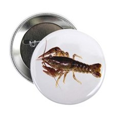Crayfish Button