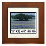 Texas Bluebonnets Framed Tile