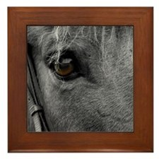 Horse Eye Framed Tile