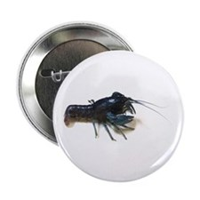 "Blue Crayfish 2.25"" Button (10 pack)"