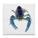 Blue Crayfish Tile Coaster