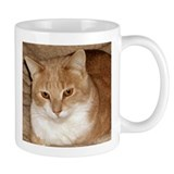 The Ginger Cat (Wally) Coffee Mug
