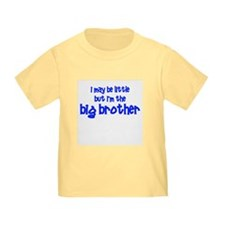 Little Big Brother T
