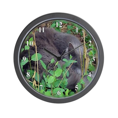 Grey Kitten Cat Naps in Honysuckle Wall Clock