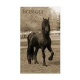 Baron*20 Rectangle Decal