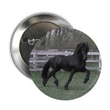 "Baron*05 2.25"" Button (10 pack)"