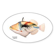 Picasso Trigger Fish Oval Decal