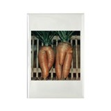 Carrot Adam and Eve Rectangle Magnet (10 pack)