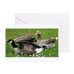 Odd Goose Couple Greeting Card