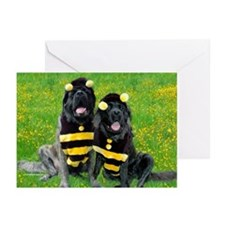 Bees in Garden Greeting Cards (Pk of 10)