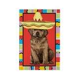 Fiesta Labrador Rectangle Magnet