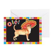Cinco de Mayo Chihuahua Greeting Card