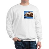 Himalayan Kitten Grey or White Sweatshirt
