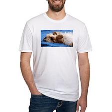 Himalayan Kitten Shirt