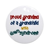 Proud Grandma....2 (Grandchild DS) Ornament (Round
