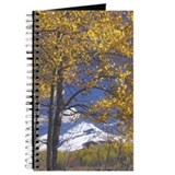 Snowcapped Mountain and Aspen Tree Journal