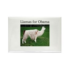 Llamas for Obama Rectangle Magnet