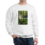 Eel River at Ravencliff Sweatshirt