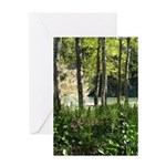 Eel River at Ravencliff Greeting Card