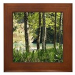 Eel River at Ravencliff Framed Tile
