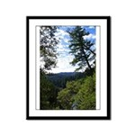 Eel River from the cliff Framed Panel Print
