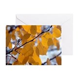 Fall Aspen Leaves Greeting Cards (Pk of 10)