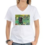 Irises / Cairn (#17) Women's V-Neck T-Shirt