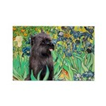 Irises / Cairn (#17) Rectangle Magnet (100 pack)