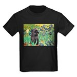 Irises / Cairn (#17) Kids Dark T-Shirt