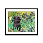 Irises / Cairn (#17) Framed Panel Print