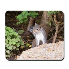 Pretty Squirrel Mousepad