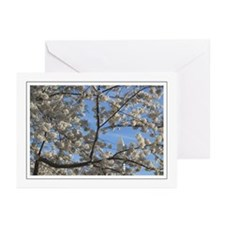 Blossom Monument Greeting Cards (Pk of 10)
