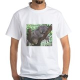 Sleeping Koala Shirt