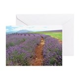 Lavendar Farm Greeting Cards (Pk of 10)