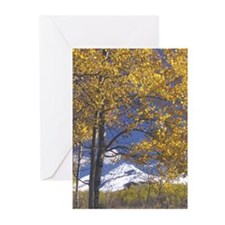Snowcapped Mtn. Greeting Cards (Pk of 10)
