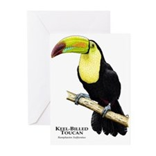 Keel-Billed Toucan Greeting Cards (Pk of 10)