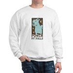 Pit Power Sweatshirt