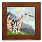 Creation / Catahoula Leopard Framed Tile