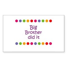 Big Brother did it Rectangle Decal