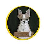 Chihuahua Puppy 3.5