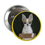 Chihuahua Puppy 2.25