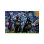 Starry / Schipperke Pair Rectangle Magnet (100 pac