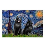 Starry / Schipperke Pair Postcards (Package of 8)
