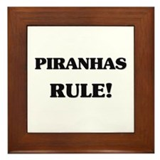 Piranhas Rule Framed Tile