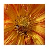 Orange w/Bee Tile Coaster