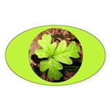 Poison Oak Oval Sticker (50 pk)