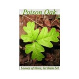 Poison Oak Rectangle Magnet (100 pack)